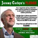 jeremy corbyn vegan