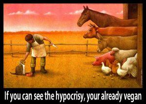 Hypocrisy vegan cat knige