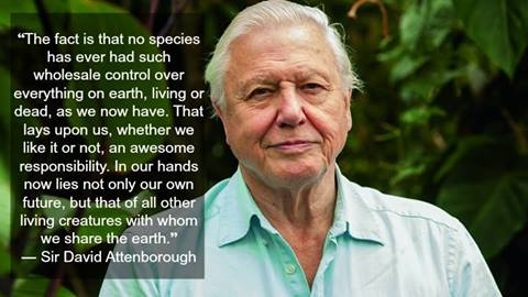david attenborough vegan